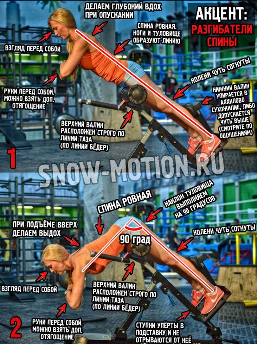 Упражнения для разгибателей спины