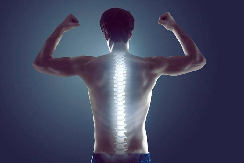 Укрепляем ромбовидную мышцу спины с помощью упражнений